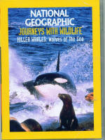 National Geographic Killer Whales Wolves of the Sea DVD